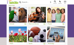 Screenshot of Kids InfoBits Homepage.